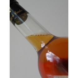 TROUSPINETE D'ANTAN EPINES BLANC vin blanc 17° 75 CL
